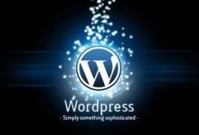 wordpress去除谷歌字体,提高访问速度-轻语博客
