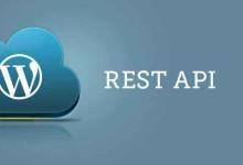 什么是WordPress REST API完整解读手册-轻语博客
