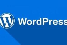 WordPress官网 429 Too Many Request-轻语博客